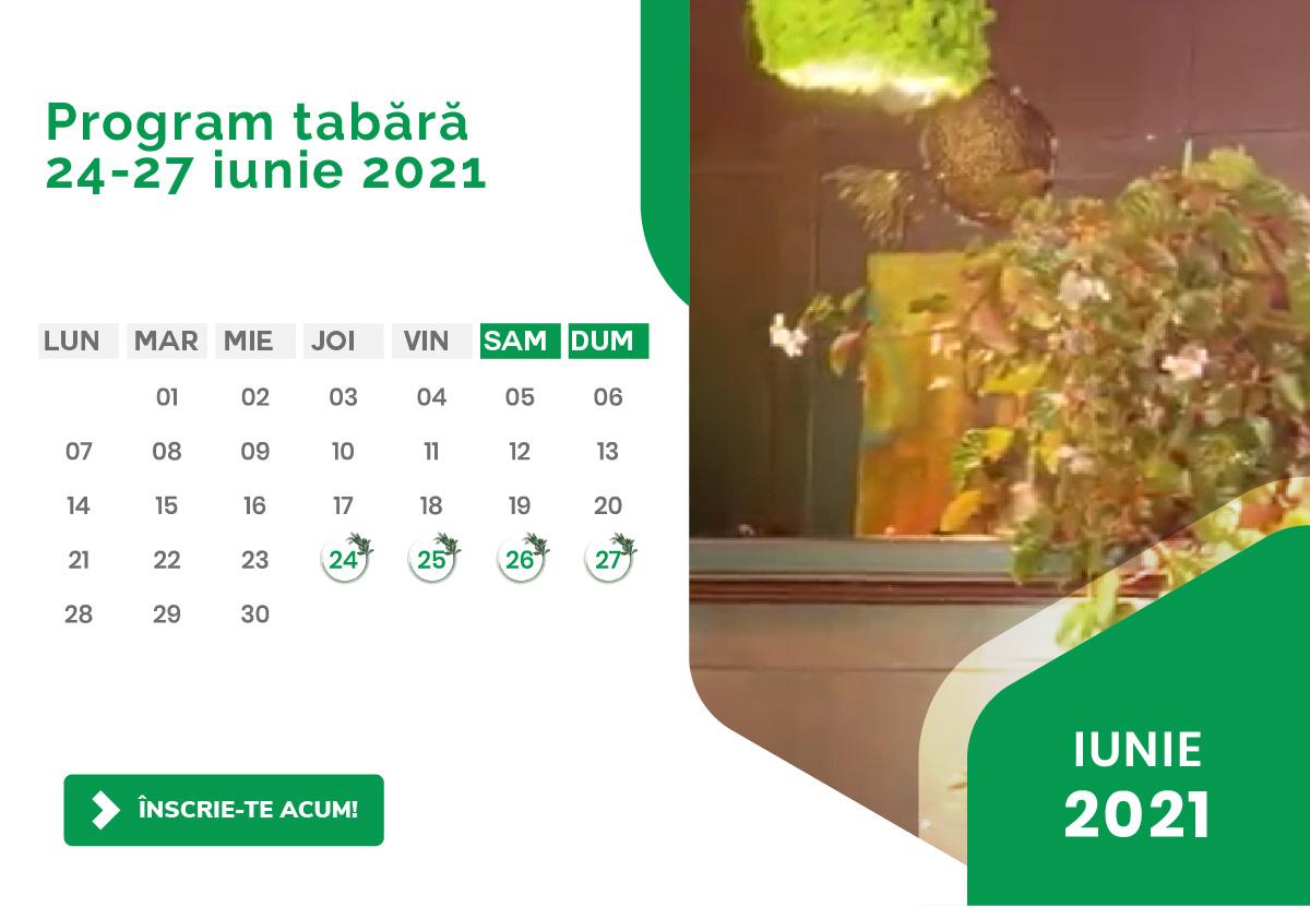 Program Tabara Detox - Luna iunie 2021